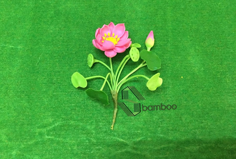 Hoa dat set nhat