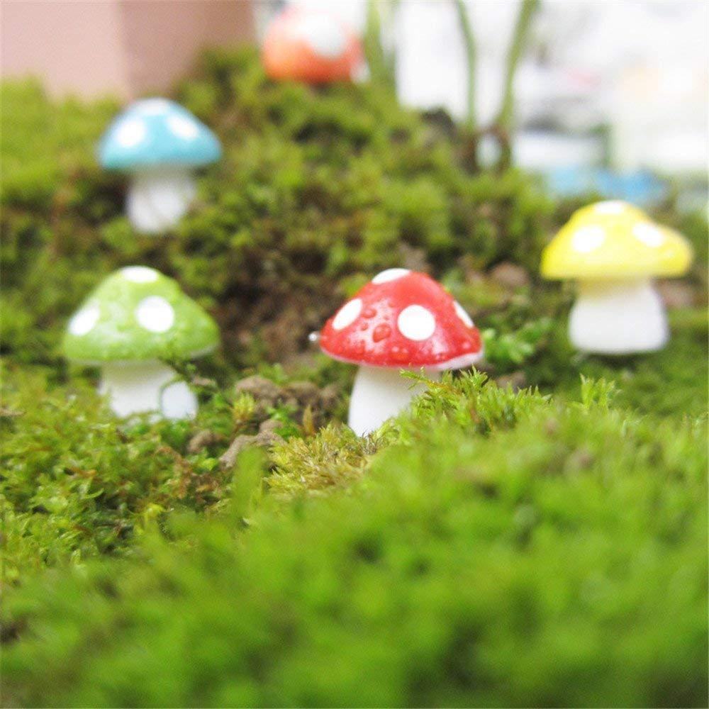 Combo 5 Nấm nhựa mini size nhỏ trang trí tiểu cảnh- Màu ngẫu nhiên